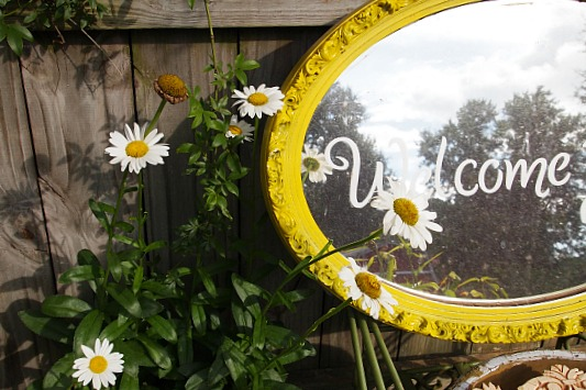 daisies next to a mirror in the garden