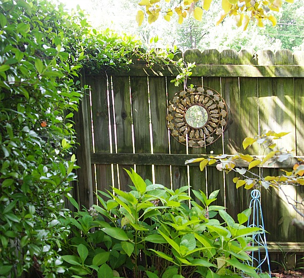 7 Tips for thrifting - found this mirror used on a privacy fence in a garden at a thrift store