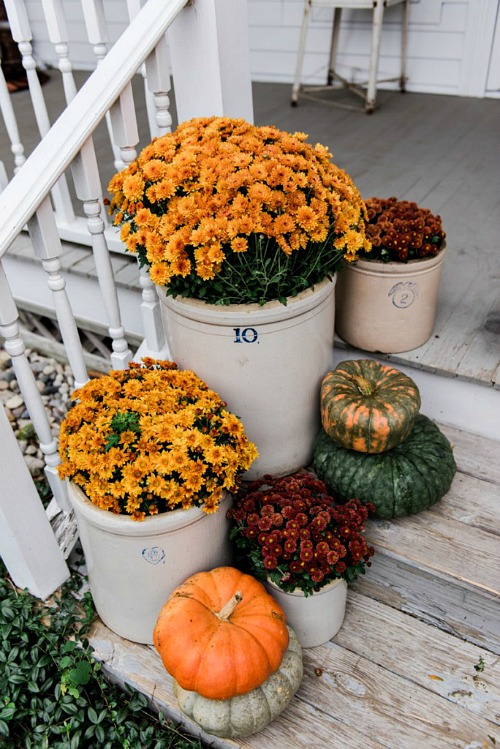Fall Front Porch with Mums- If you want an easy way to decorate your home for fall, you should get some mums! Check out these creative ideas for decorating with mums! | floral decoration, floral decor, easy ways to decorate your home for fall #decor #fall #autumn #flowers #mums #chrysanthemums #decorating #ACultivated Nest