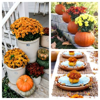 Decorating With Mums for Fall