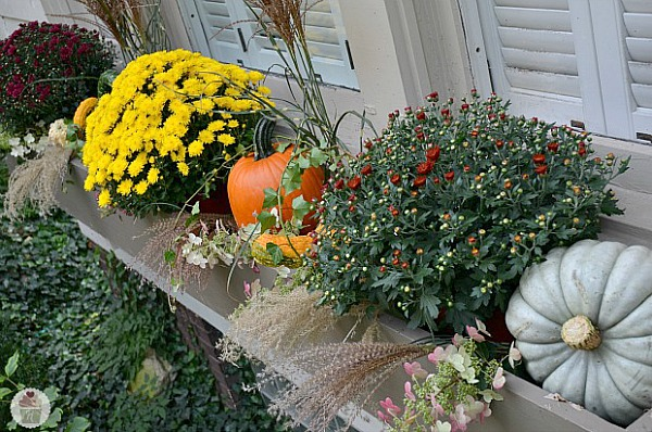 Using Mums in Fall Decorating- If you want an easy way to decorate your home for fall, you should get some mums! Check out these creative ideas for decorating with mums! | floral decoration, floral decor, easy ways to decorate your home for fall #decor #fall #autumn #flowers #mums #chrysanthemums #decorating #ACultivated Nest
