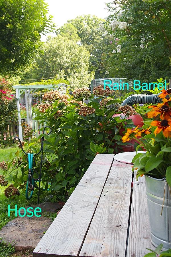 hose and rain barrel near potting bench