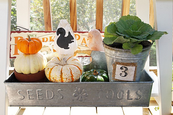 galvanized carrier with pumpkin topiary