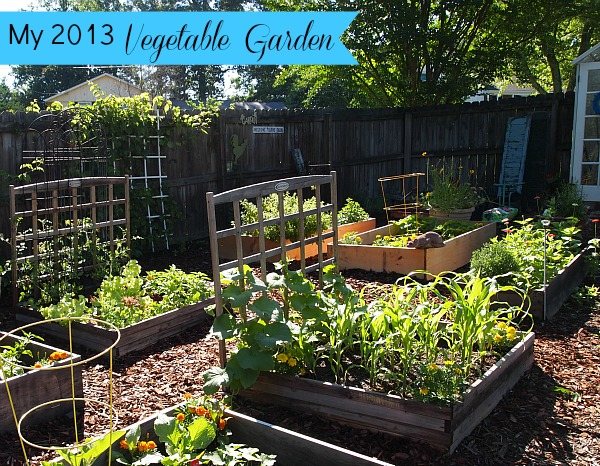 A Cultivated Nest Vegetable Garden