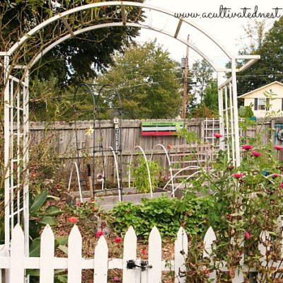 Southern fall vegetable garden