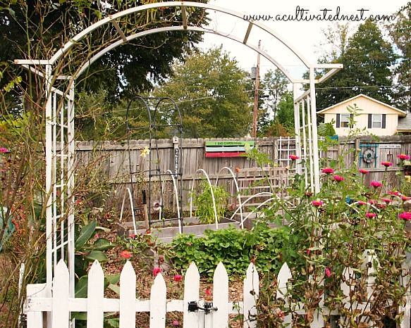 Extending My Harvest By Planting A Fall Vegetable Garden A – What to Plant in My Vegetable Garden