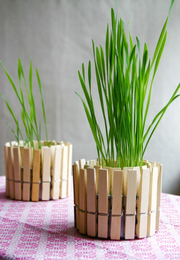 clothespin-planter from Family Chic