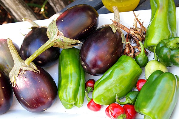 homegrown eggplants, bell peppers, shallots