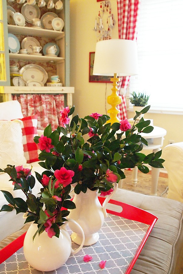 fresh camellias in the living room