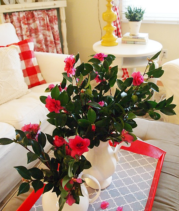 A Simple Pleasure - fresh cut camellias from the garden