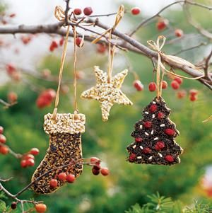 bird seed cookies from Midwest Living (roundup of easy homemade birdseed feeders)
