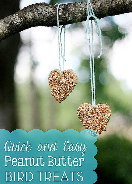 DIY peanut butter bird treats {10 easy homemade birdseed feeders}