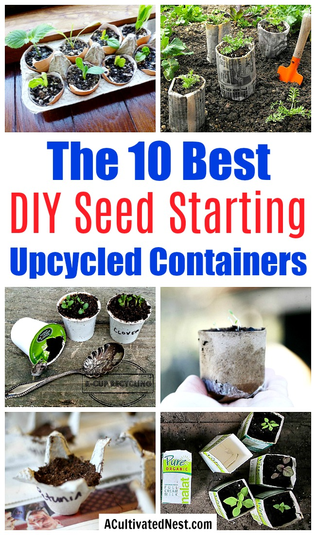 10 Creative Seed Starting Ideas- Start your seeds the frugal way with these 10 DIY upcycled seed starting containers! So many inexpensive everyday items can make great seed starters! | DIY seed starting container hacks, how to start seeds, frugal gardening, save money on gardening, gardening tips, upcycled seed starting containers, gardening hacks #gardening #seedStarting #ACultivatedNest