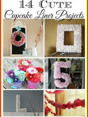14 cupcake liner projects