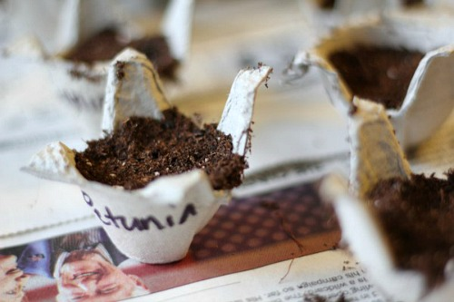 10 Upcycled Seed Starting Cup Ideas- Egg Carton- Start your seeds the frugal way with these 10 DIY upcycled seed starting containers! So many inexpensive everyday items can make great seed starters! | DIY seed starting container hacks, how to start seeds, frugal gardening, save money on gardening, gardening tips, upcycled seed starting containers, gardening hacks #gardening #seedStarting #ACultivatedNest