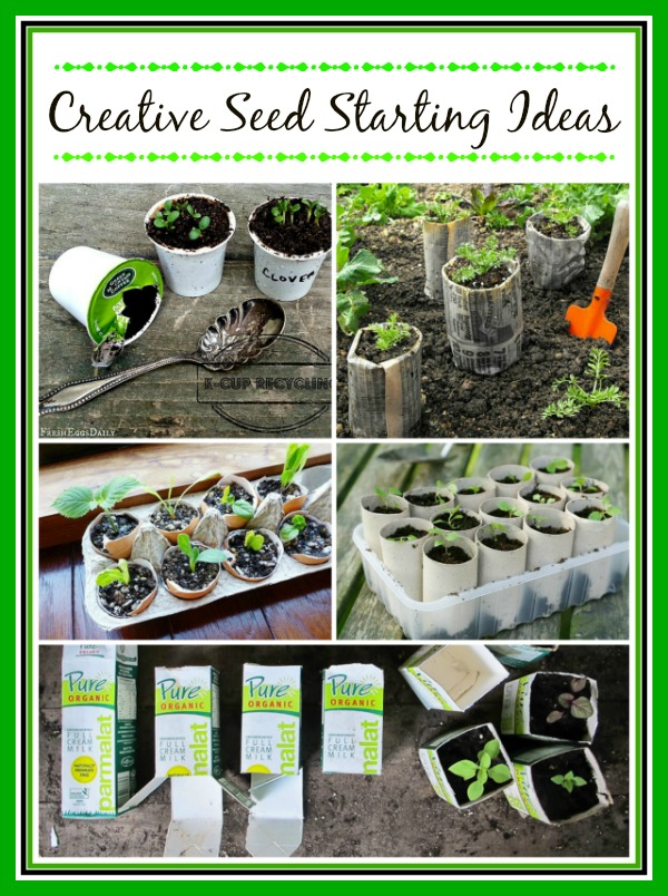 10 Creative Seed Starting Ideas - Save money starting your seeds with these 10 clever seed starting ideas! There are so many DIY seed starting containers you can make out of recycled items! | DIY seed starting container hacks, how to start seeds, frugal gardening, save money on gardening, gardening tips, upcycled seed starting containers, gardening hacks #gardeningTips #gardening #ACultivatedNest