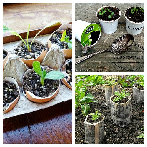 10 Creative Seed Starting Ideas- You don't have to buy those little plastic pots or peat pots to start your seeds. Instead, check out these 10 inexpensive creative seed starting ideas! | DIY seed starting container hacks, how to start seeds, frugal gardening, save money on gardening, gardening tips, gardening tricks, gardening hacks #gardening #garden #ACultivatedNest