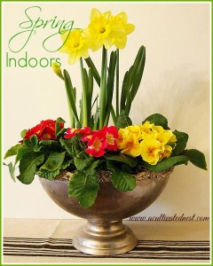 Decorate With Spring Flowers Indoors