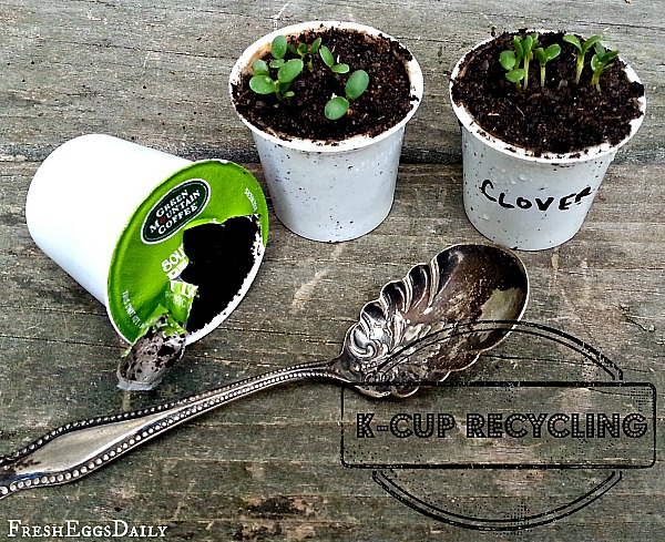 10 Creative Seed Starting Ideas- K-Cups- Start your seeds the frugal way with these 10 DIY upcycled seed starting containers! So many inexpensive everyday items can make great seed starters! | DIY seed starting container hacks, how to start seeds, frugal gardening, save money on gardening, gardening tips, upcycled seed starting containers, gardening hacks #gardening #seedStarting #ACultivatedNest