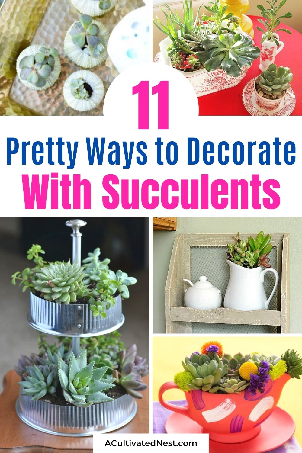 11 Beautiful Ways to Decorate With Succulents- If you want to decorate with plants, but want something easy to maintain, then you need to use succulents! For some great inspiration, check out these pretty ways to decorate with succulents! It's easy to make a beautiful succulent garden!   succulent container ideas #succulents #homeDecor #housePlants #indoorGardening #ACultivatedNest