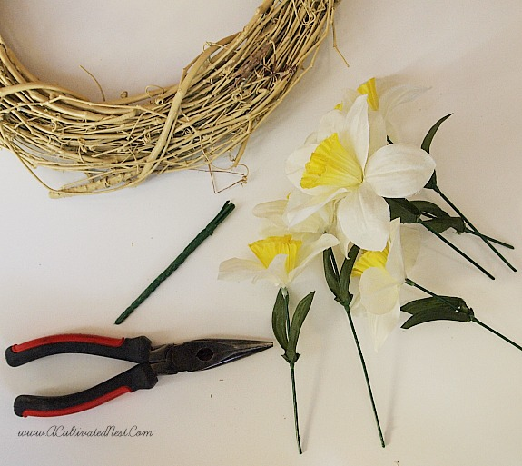 cut daffodil stems
