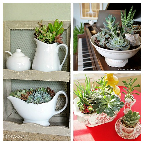 11 Beautiful Ways to Decorate With Succulents- Because succulents come in so many different shapes, sizes and colors, it's easy to decorate with them! For some clever ways to incorporate them in your home's decor, take a look at these indoor succulent container ideas! | #succulents #decorating #housePlants #indoorGardening #plants #decor