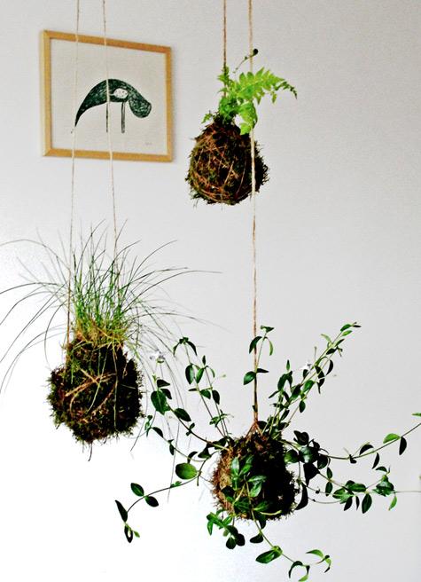 """String Garden """"Kokedama"""""""