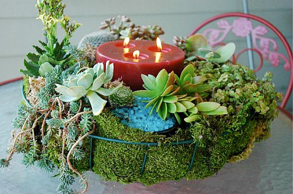 succulent tabletop candle wreath