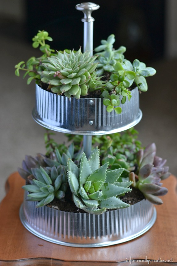 industrial tiered tabletop succulent garden by Infarrantly Creative