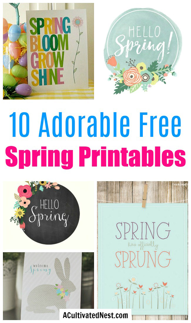 10 Adorable Spring Free Printables- These 10 spring wall art prints are an easy (and inexpensive) way to get your home ready for spring! | spring decor, spring art prints, Easter decor, Easter art prints, #freePrintables #wallArt #spring #ACultivatedNest