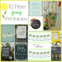 10 Cute Spring Free Printables- Decorate your home for spring on a budget with these 10 beautiful free printable spring wall art prints! | #freePrintable #spring #printable #ACultivatedNest