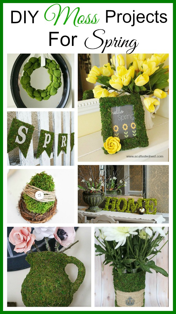 A collection of DIY moss projects for spring