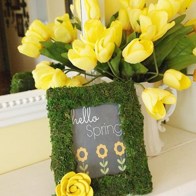 DIY moss covered frame