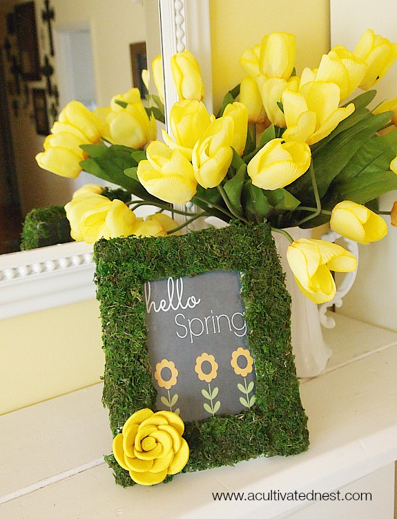 DIY moss projects for spring. Moss is a great way to add a touch of spring and nature to your home. Lots of great DIY home decorating projects!| spring home decor| easy crafts moss covered frame