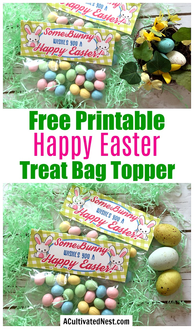 "Free Printable Spring Wall Art + Easter Treat Bag Topper- Finish off your Easter party favors with this adorable ""SomeBunny wishes you a Happy Easter"" treat bag topper printable! 
