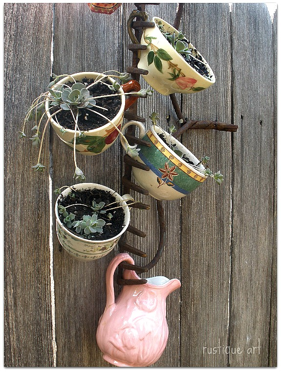 rake used to hold tea cups planted with succulents