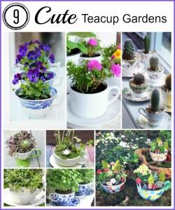 9 Cute Tea Cup Gardens