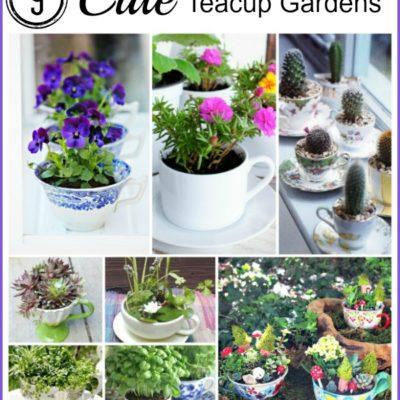 9 Cute teacup gardens