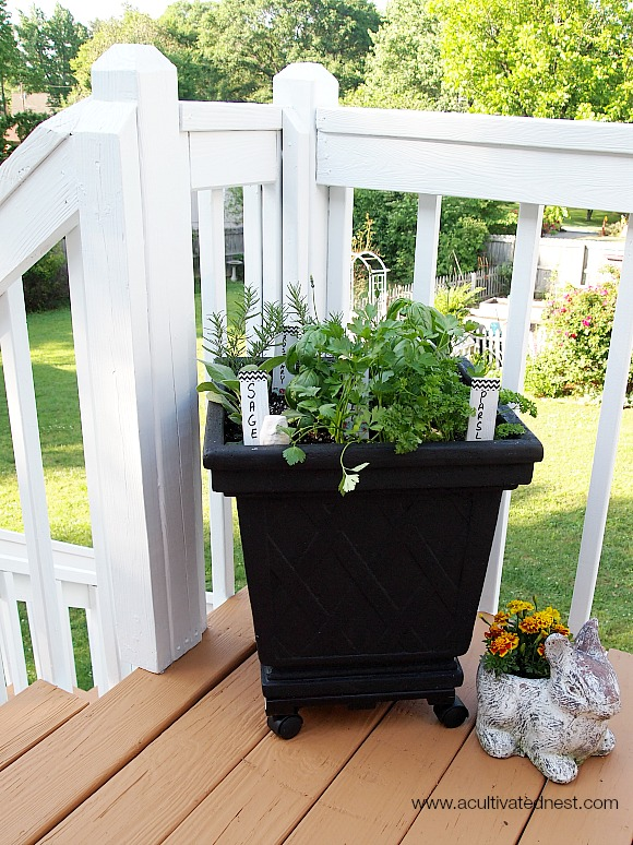 container herb garden with washi tape herb markers