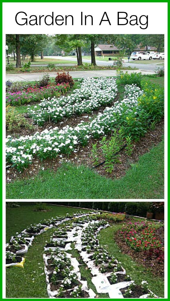 Diy Saay How To Make A Garden In Bag Of Soil