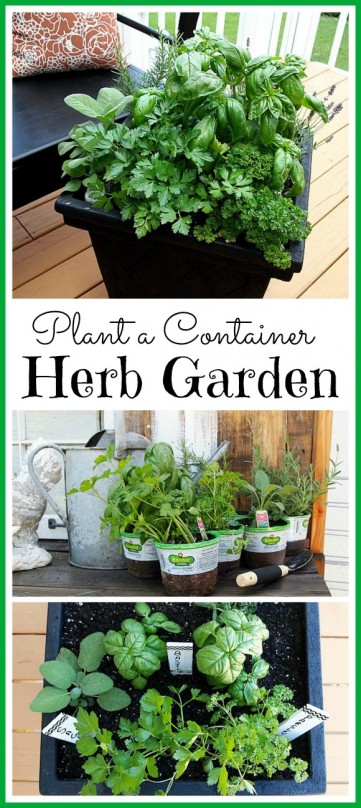 How to plant a container herb garden. This is a great space saver!