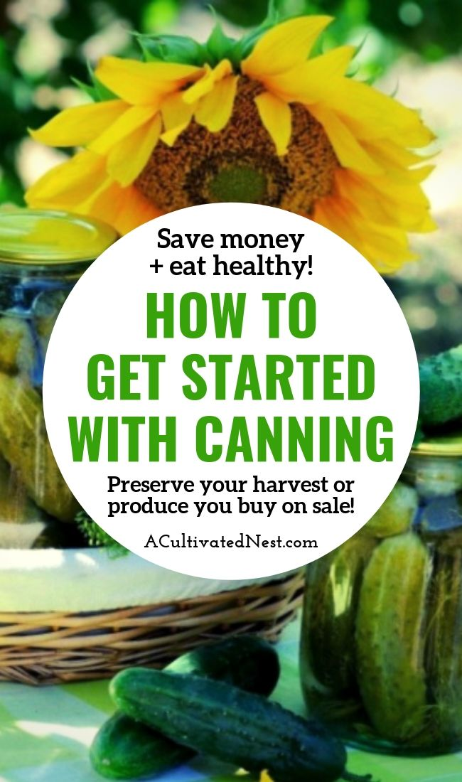 How To Get Started With Canning- Learning how to can food is a great way to save money on groceries! You can either preserve your harvest from your garden, or preserve food you buy on sale! Either way, it's great for your grocery budget! | #canning #foodPreservation #reduceFoodwaste #preserveFood #ACultivatedNest