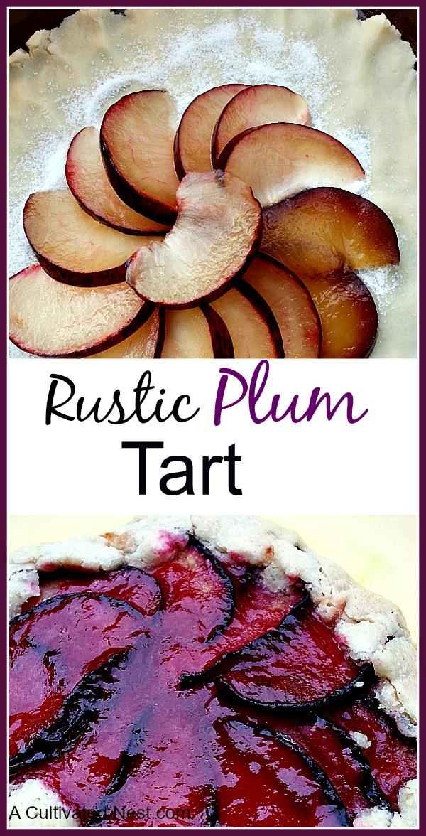 Delicious Rustic Plum Tart Recipe from scratch