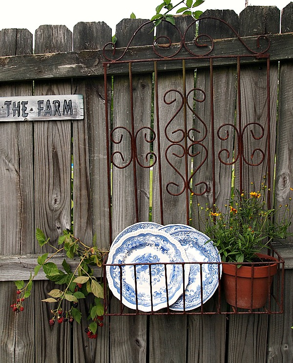 blue transferware in an old iron planter