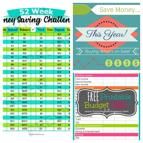 image about Coupon Binder Printable titled 10 Absolutely free Printables toward Conserve By yourself Economic + 5 Far more- A Cultivated Nest