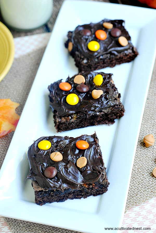 Delicious homemade brownies with Reese's Pieces and Butterscotch chips for a fun fall dessert!