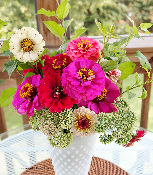 zinnias in a milkglass vase from the thrift store