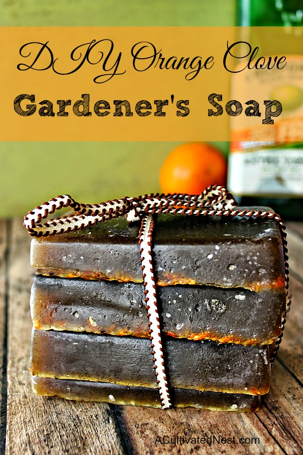 DIY Orange Olive Oil Gardener's Soap- This heavenly scented exfoliating DIY Orange Clove Gardeners bar soap works really well for garden soil stained hands as well as for oil stained hands! | DIY, homemade soap, homemade beauty products, gardening