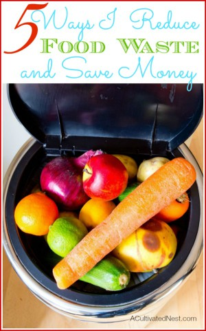 Great tips for reducing food waste at home. The most expensive thing in your kitchen is all the food that goes to waste!