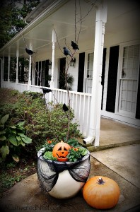 How to make a transitional fall & Halloween Planter